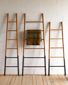 Storage ladder