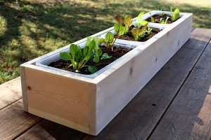 wooden-planter-boxes